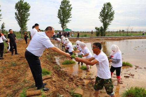 袁隆平海水稻插秧仪式在禹王湿地举行
